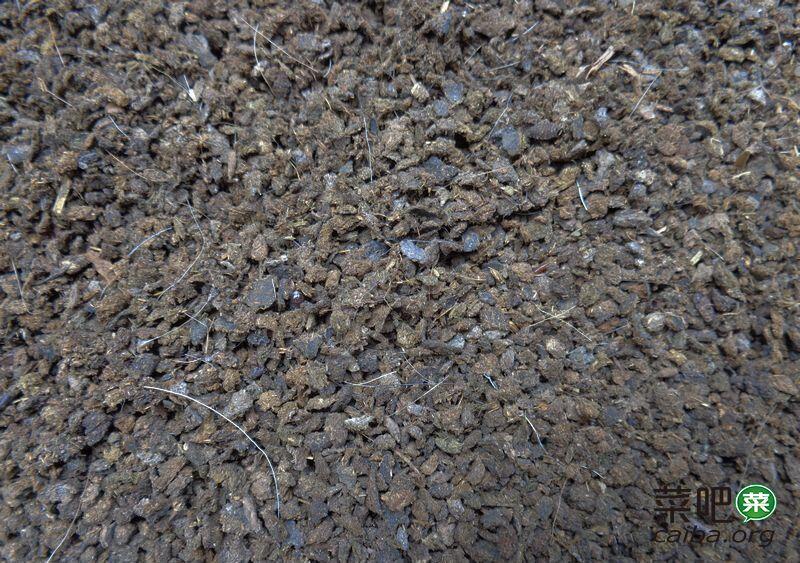 解析:羊粪给土壤带来什么